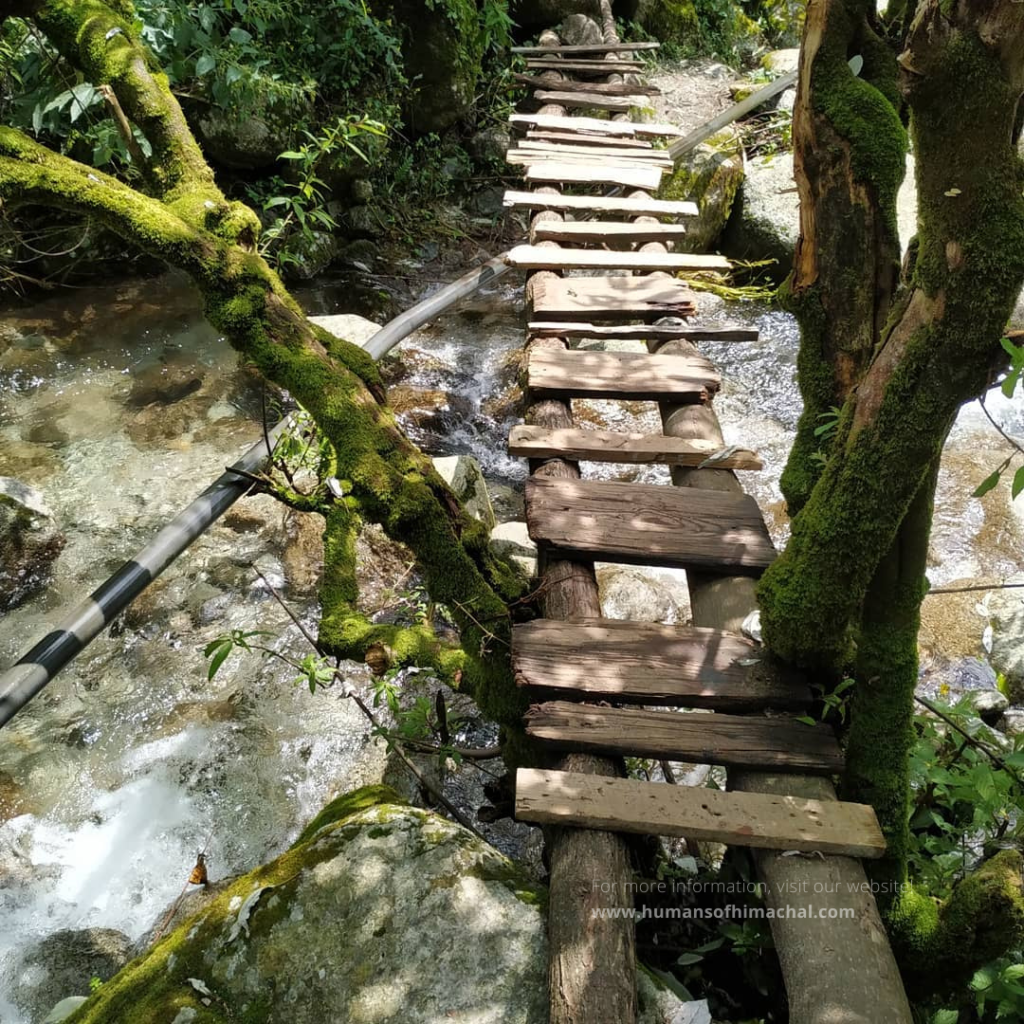 Wooden Bridge - Humans of Himachal